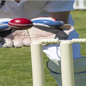 cricket holiday-min
