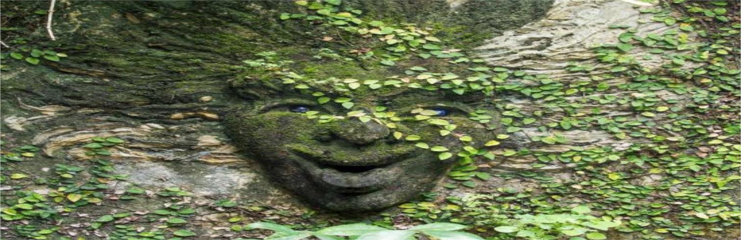 Bawa's Lunuganga Garden-min