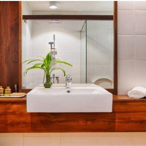bathroom standard Ayurveda Palions-min