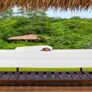 spa srilanka-min