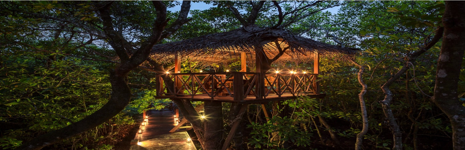 srilank tree hotel-min