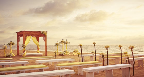 uga bay wedding-min